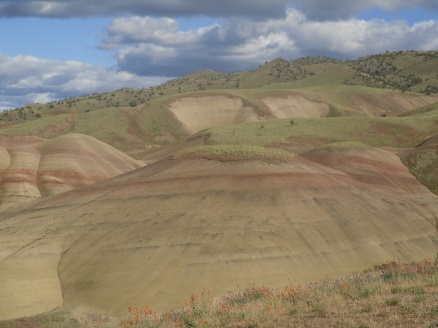 Painted Hills 006