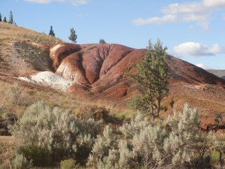Painted Hills 037