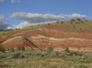 Painted Hills 099
