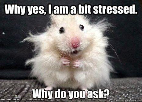 stressed3